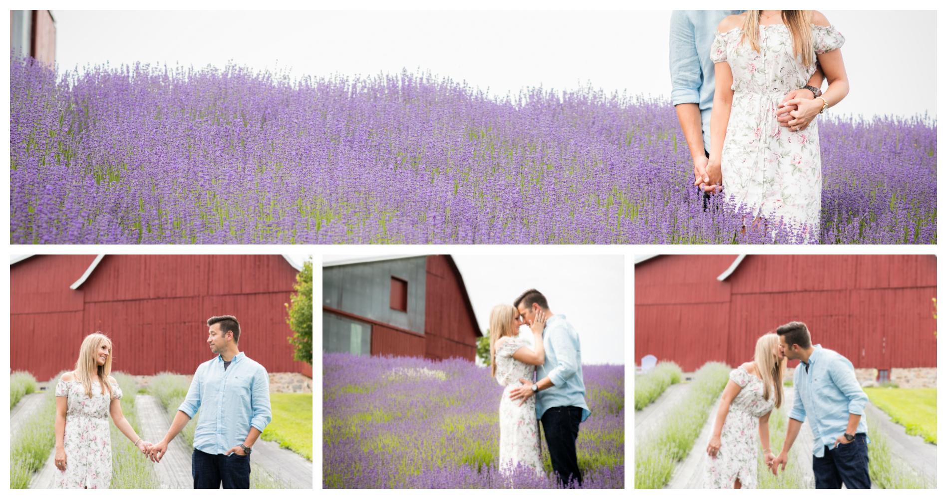 Lavender Hill Farm Engagement